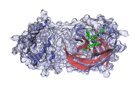 Free 3d molecular visualization software